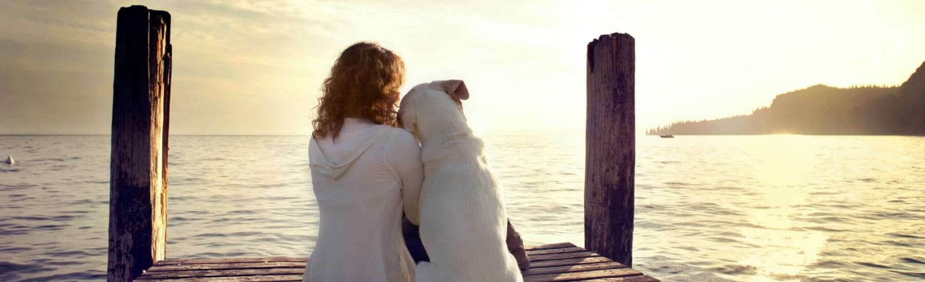 Dog and owner looking out onto lake